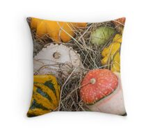decorative pumpkins Throw Pillow
