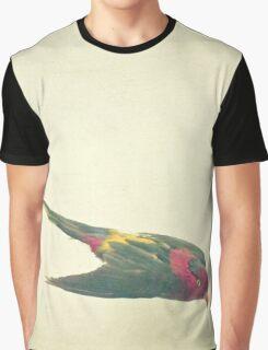 Bird Study #4 Graphic T-Shirt