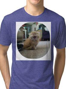 HEAR ME ROAR Tri-blend T-Shirt