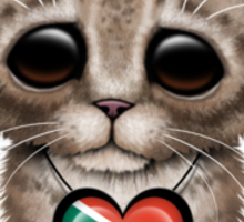 Cute Kitten Cat with South African Flag Heart Sticker
