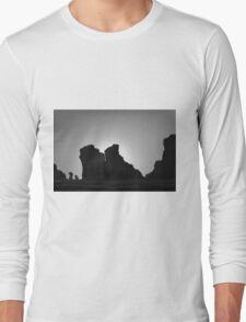 Arches NP V BW Long Sleeve T-Shirt