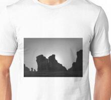 Arches NP V BW Unisex T-Shirt