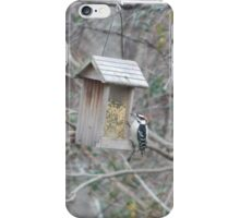 Perfect Bird Collection #14 iPhone Case/Skin