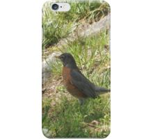 Perfect Bird Collection #9 iPhone Case/Skin