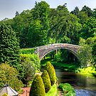Doon Bridge by Tom Gomez