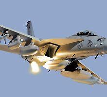 Super Hornet by Wildi