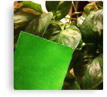 Green Canvas Print