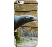 Sea Lion Side View iPhone Case/Skin
