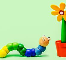 Caterpillar and Flower by MMPhotographyUK