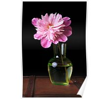Pink Peony Flower and Vase Poster
