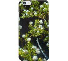 Desert Wisps iPhone Case/Skin