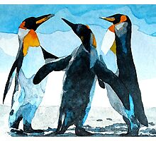 Three Penguins Photographic Print