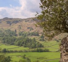 View from Helm Crag Sticker