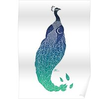Sky Peacock (white lines) Poster