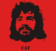 Viva la CAT Stevens! by TheCSimmons