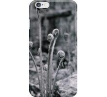Forest Ferns iPhone Case/Skin