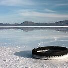 Flooded Salt Flats with Tire by Daniel Owens