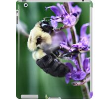 Bee Ginning iPad Case/Skin