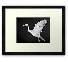 Geese in Flight Framed Print