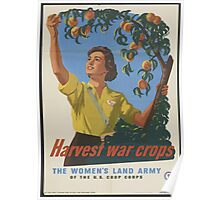 The Women's Land Army Poster