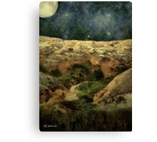 Beautiful Night in the Badlands Canvas Print