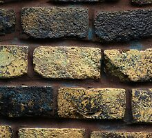 Colorful Brick Wall by rhamm