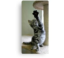 And stretch.. and 1 and 2 and 3... Canvas Print