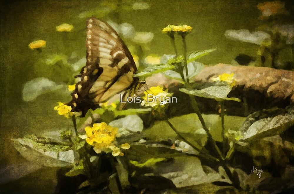 Hidden Treasure by Lois  Bryan