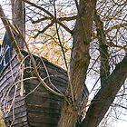 Tree Ho! by Brandon Matlock