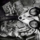 The Stolen Scissors. by Andreav Nawroski