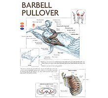 Barbell Pullover Exercise Diagram Photographic Print