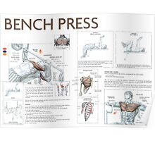 Barbell Bench Press Exercise Diagram Poster