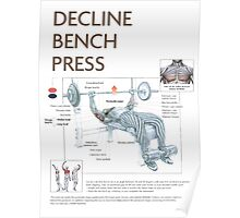 Barbell Decline Bench Press Exercise Diagram Poster