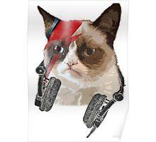 Cat bowie Poster