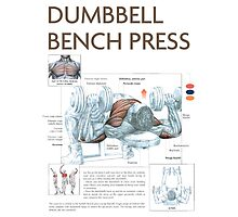 Dumbbell Bench Press Exercise Diagram Photographic Print