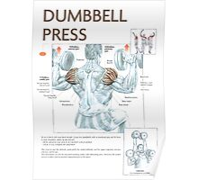 Dumbbell Overhead Press Exercise Diagram Poster