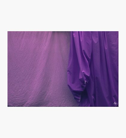 Two Sheets Abstract Purple & Fuscia Photographic Print