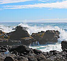 Oregon Coast by jritucci