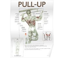 Pull-Up Exercise Diagram Poster