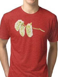 Green willow catkin watercolor painting Tri-blend T-Shirt