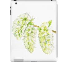 Green willow catkin watercolor painting iPad Case/Skin