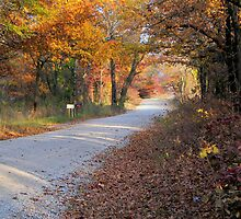 Country Fall Road Card by JohncardSmith