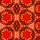 Kaleidoscope Geometry Patterns From Nature 4 by Kenneth Grzesik