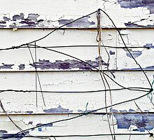 Wire © by Ethna Gillespie