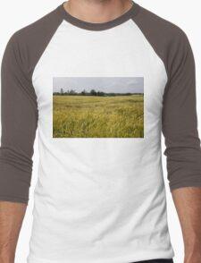 Golden Wheat Harvest, Ripening In The Wind Men's Baseball ¾ T-Shirt