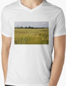 Golden Wheat Harvest, Ripening In The Wind Mens V-Neck T-Shirt