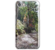 Bogong bush walk Vic iPhone Case/Skin