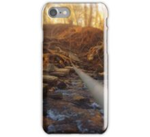 Crossing the Stream iPhone Case/Skin