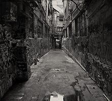 On My Way Through by Peter Kurdulija
