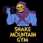 snake mountain gym by louros